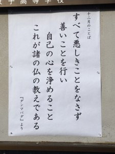 IMG_0137 (1)